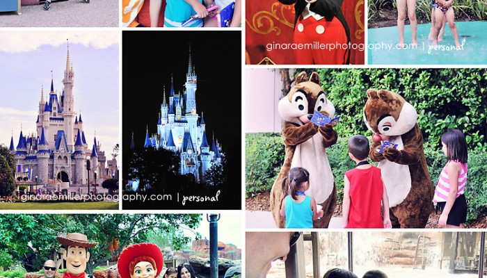 disney world photographs & trip tips