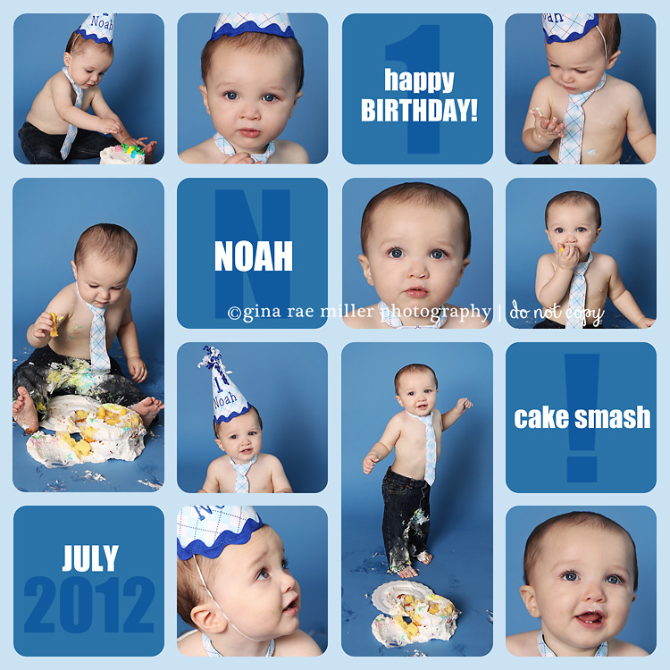 Birthday Photography Tips And Tricks: Gina Rae Miller Photography Long Island NY First 1st
