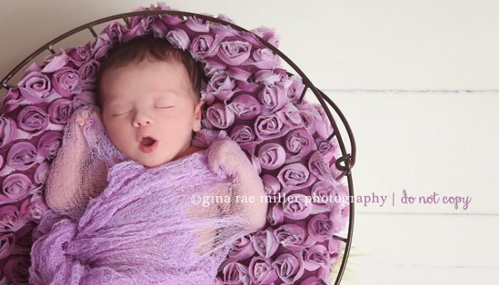 mia | long island newborn photographer
