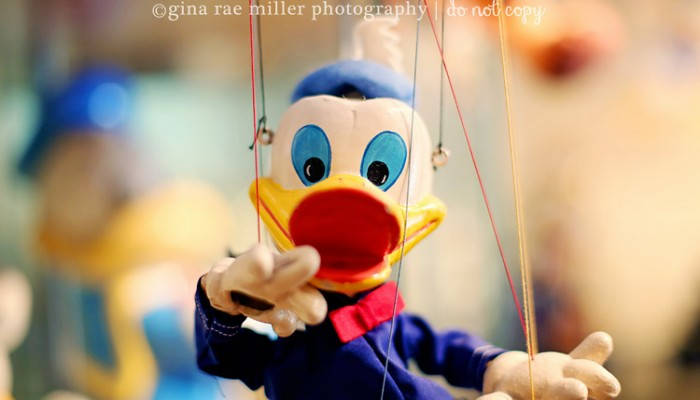 donald duck, a collection