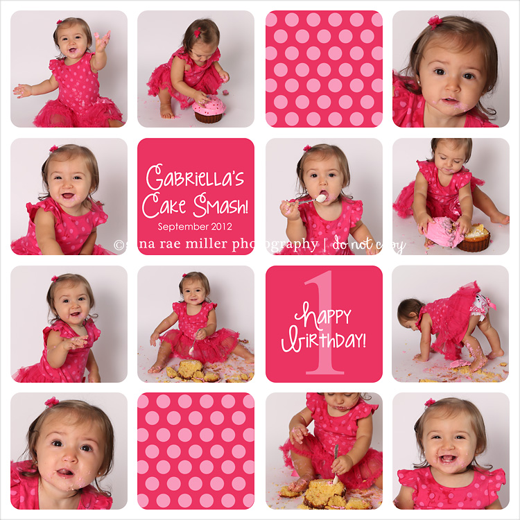 SampleBoard 12.03.24 AM a cake smash at a glance | long island birthday photographer