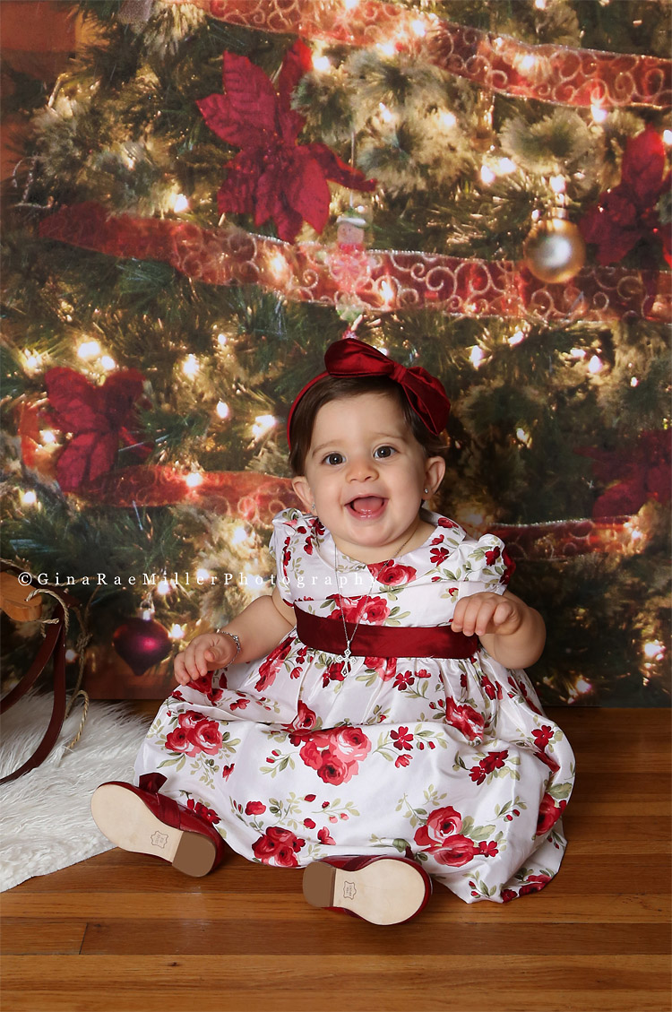 aa141 year in review | long island newborn, baby, child photographer