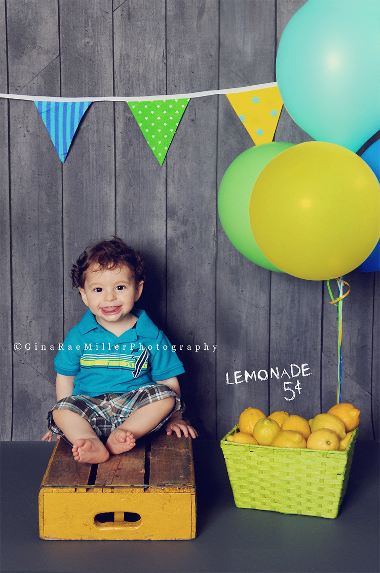 blog113 year in review | long island newborn, baby, child photographer