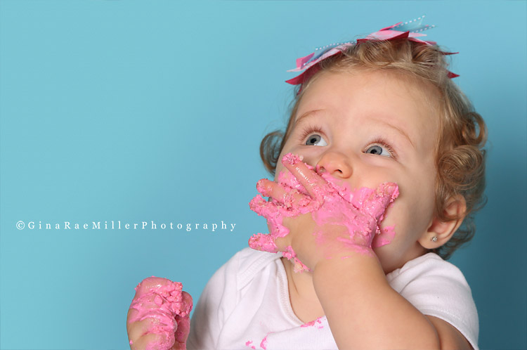 blog115 year in review | long island newborn, baby, child photographer