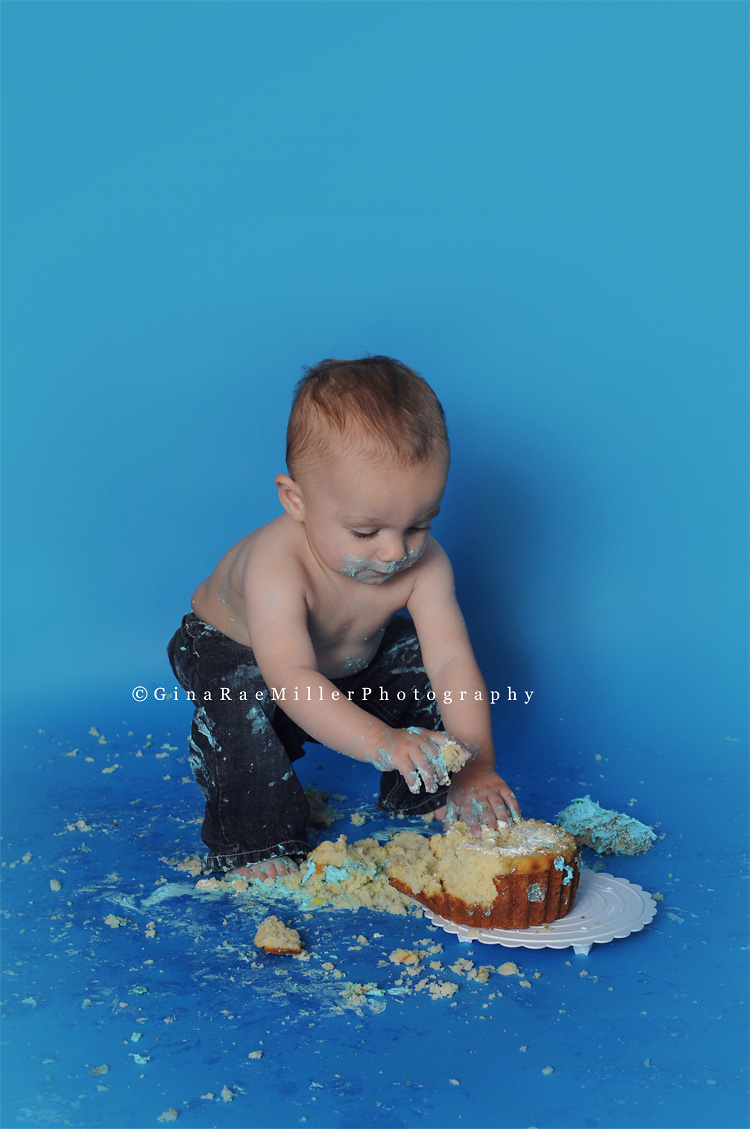 blog92 year in review | long island newborn, baby, child photographer