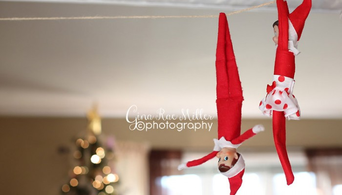 buddy & ginny the christmas elves