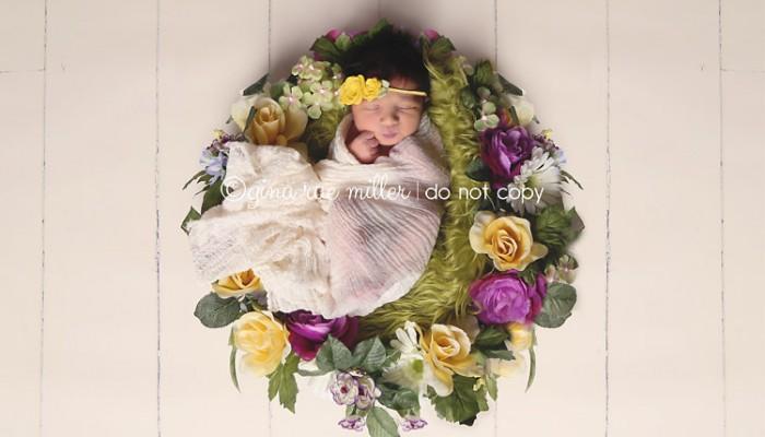 adriana | long island newborn photographer