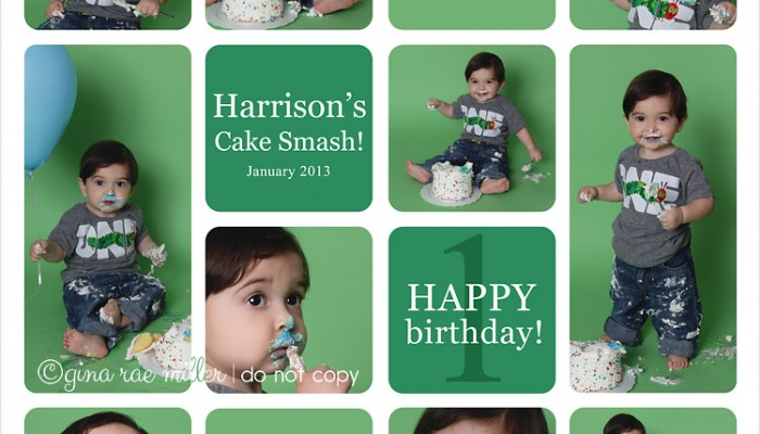 harrison | long island childrens birthday photographer