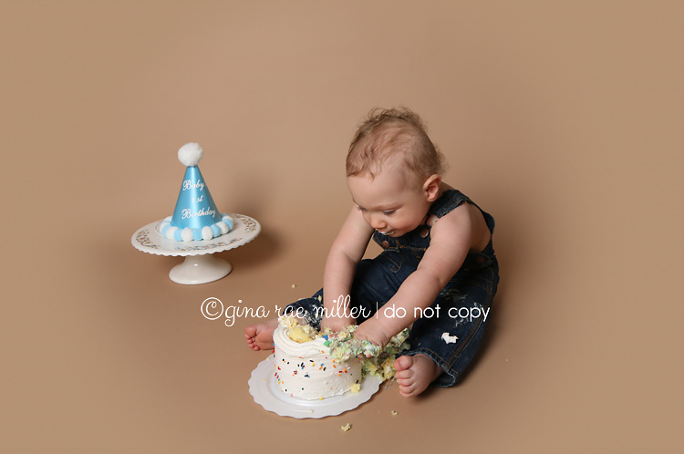 Gina Rae Miller Photography Long Island New York Childrens Cake Smash Birthday Photographer
