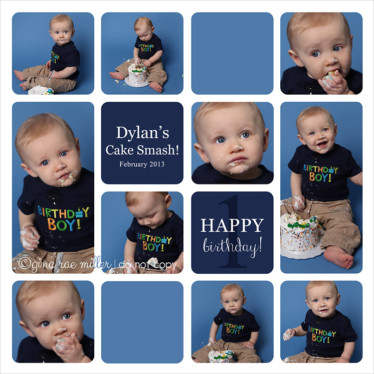 SampleBoard a cake smash at a glance | long island birthday photographer