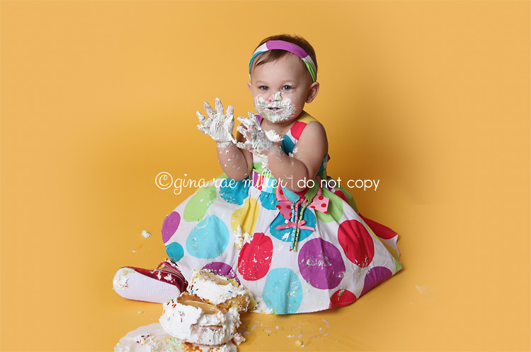 Gina Rae Miller Photography Long Island Cake Smash Birthday Photographer