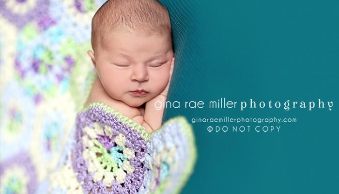 addison | long island newborn photographer