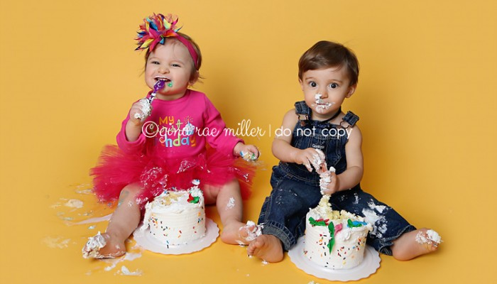 twin smash! | long island childrens birthday photographer