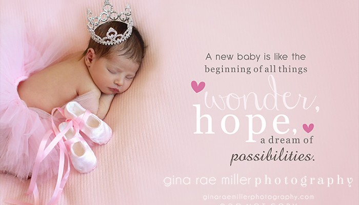 mia rose | long island newborn photographer