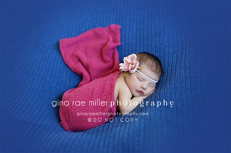 Mia3 mia rose | long island newborn photographer