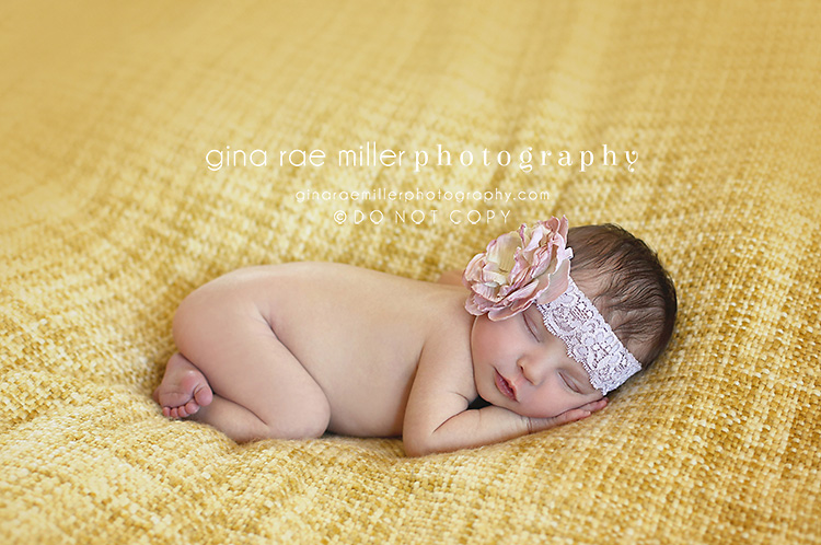 Mia6 mia rose | long island newborn photographer