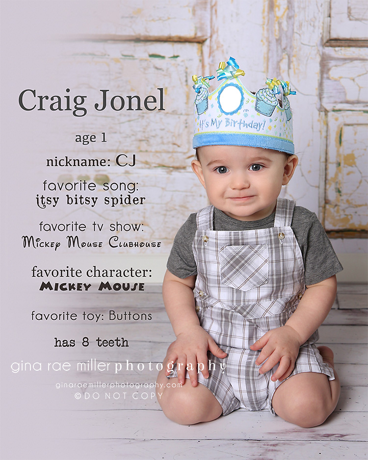 cj7 cj | long island childrens birthday photographer