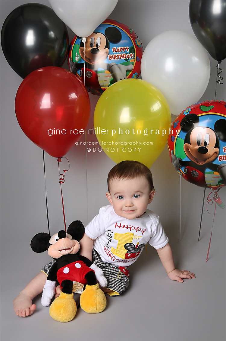 cj8 cj | long island childrens birthday photographer