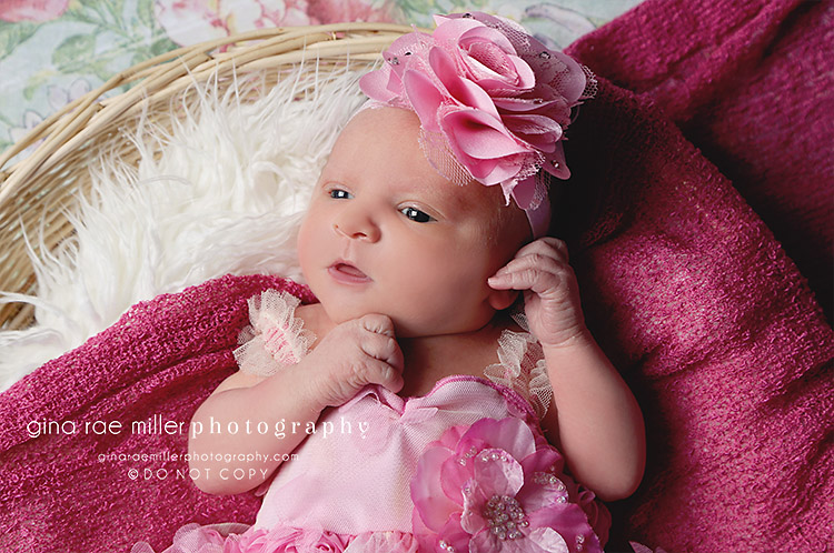 ol2 olivia | long island newborn photographer