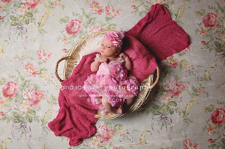 ol3 olivia | long island newborn photographer