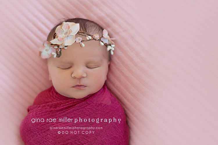 ol4 olivia | long island newborn photographer