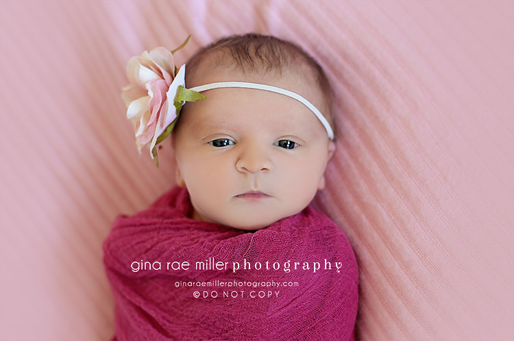 ol5 olivia | long island newborn photographer