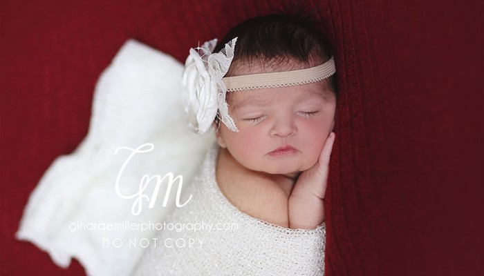 lucy blair | long island newborn photographer
