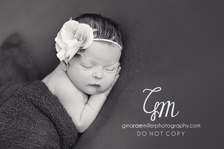 e emilia brielle | long island newborn photographer