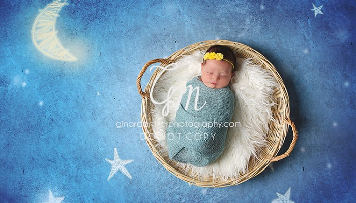 emilia brielle | long island newborn photographer