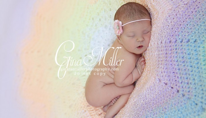 abigael | long island newborn photographer