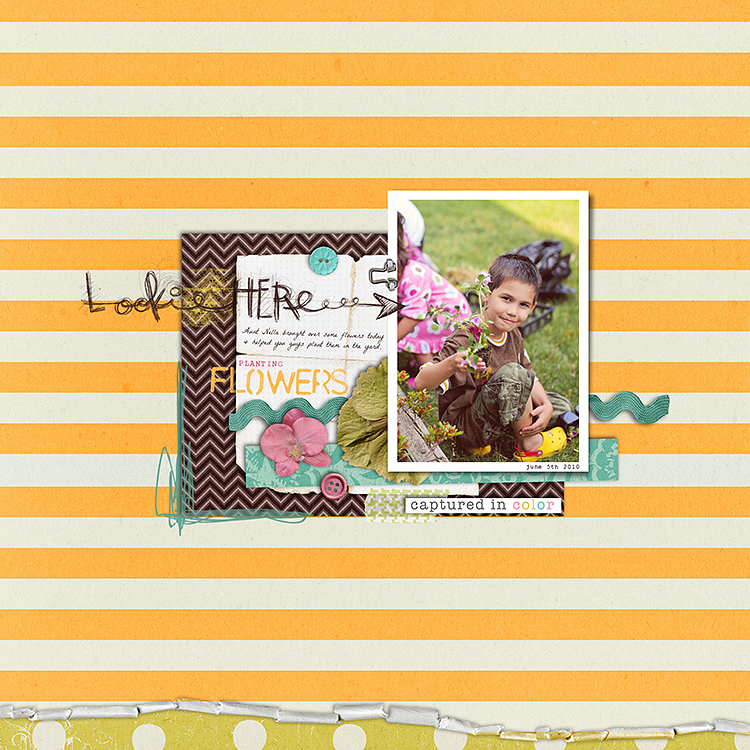 Gina Miller Designs Digital Scrapbooking GMD
