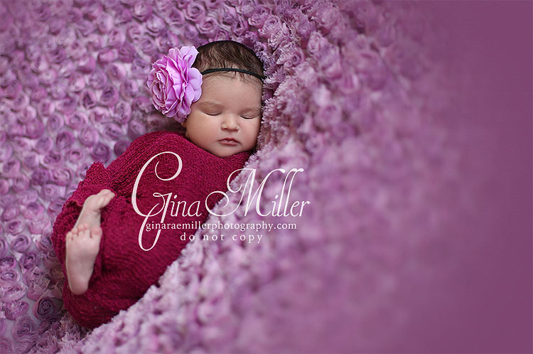 c6 caylie jade | long island newborn photographer