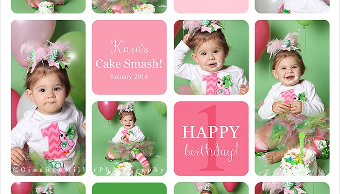 kara | long island cake smash photographer
