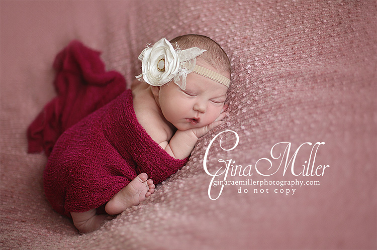l3 lucy jo | long island newborn photographer