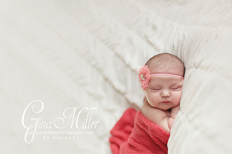 Gina rae miller photography long island ny nassau county newborn photographer