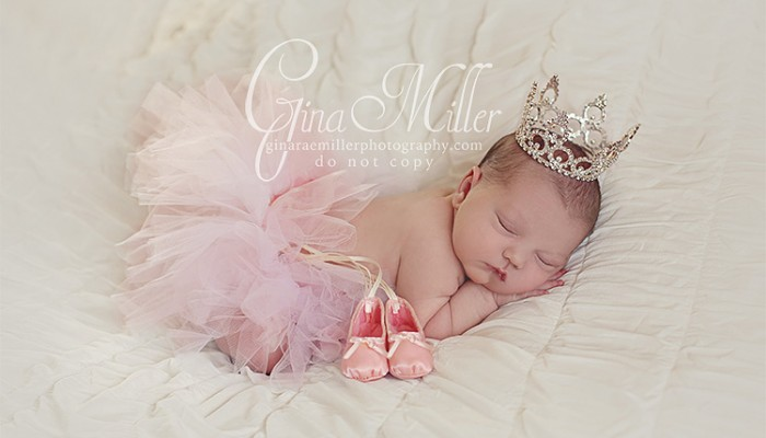 lucy jo | long island newborn photographer