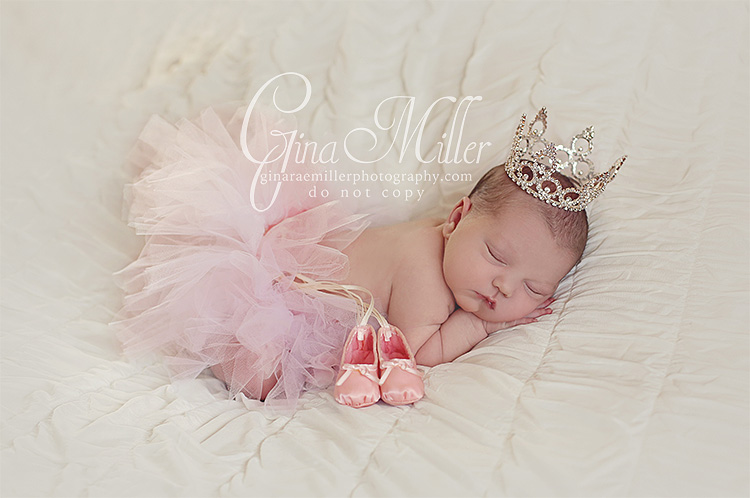 l8 lucy jo | long island newborn photographer