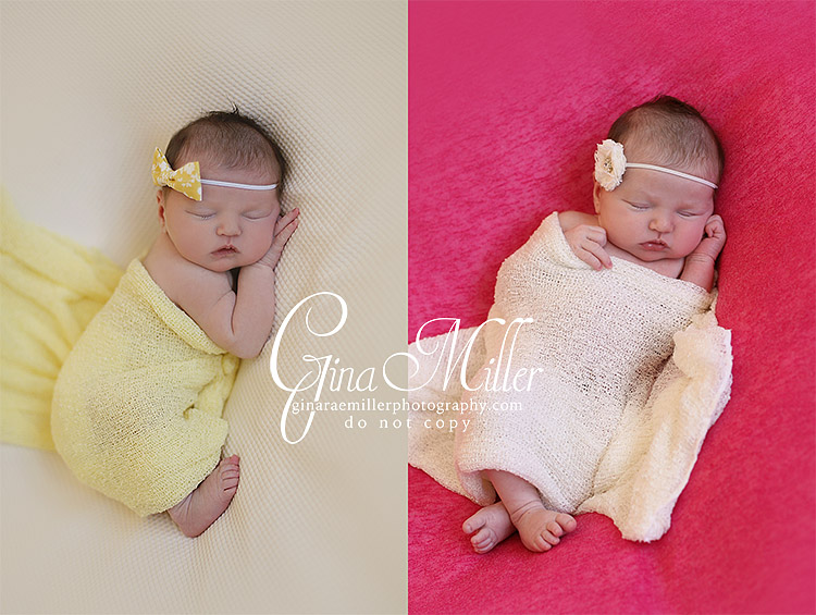 mac10 mackenzie | long island new york newborn photographer