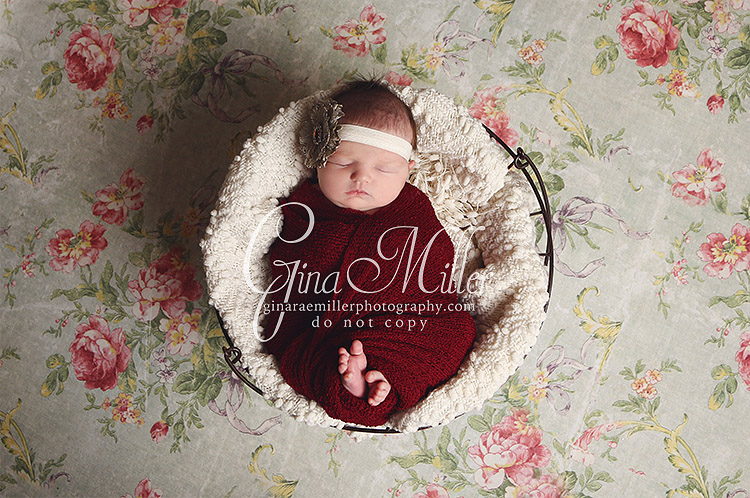mac3 mackenzie | long island new york newborn photographer