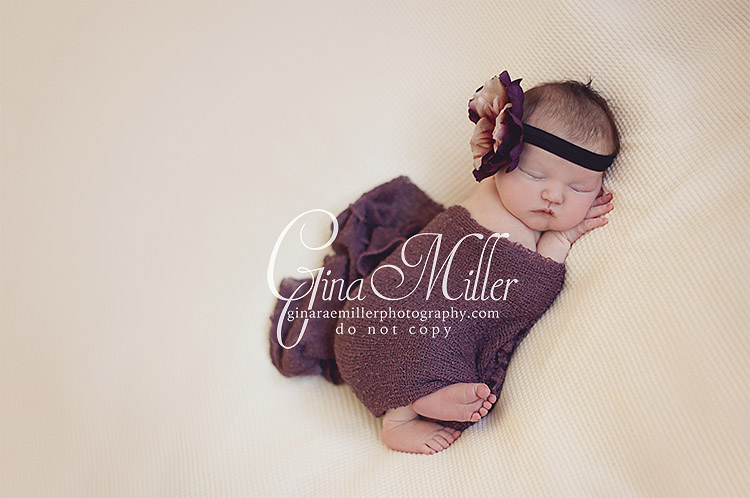 mac8 mackenzie | long island new york newborn photographer