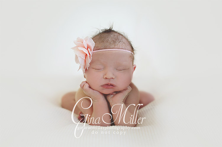 mac9 mackenzie | long island new york newborn photographer