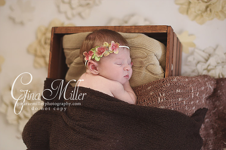 a11 adelyn | long island newborn photographer