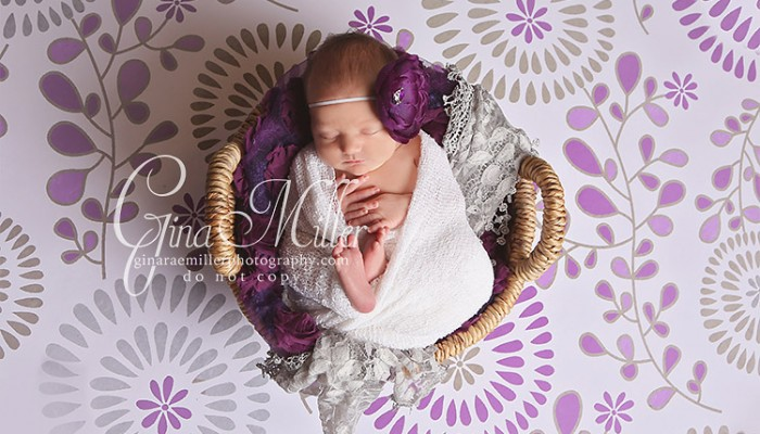 avery | long island newborn photographer