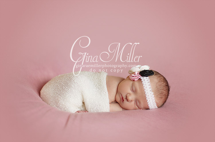 a5 avery | long island newborn photographer