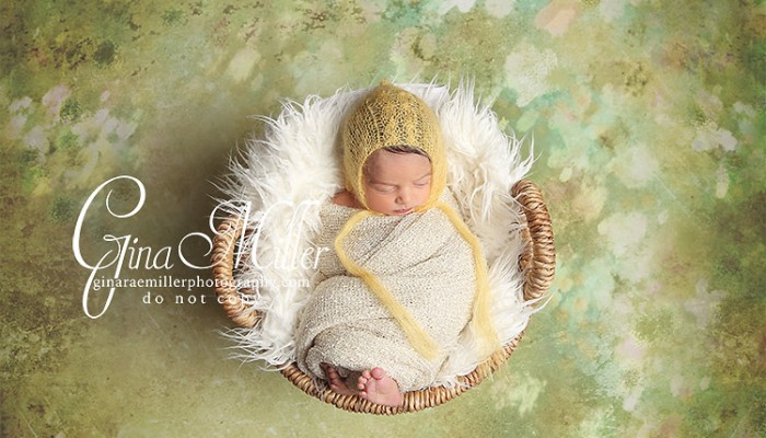 alexa grace | long island newborn photographer