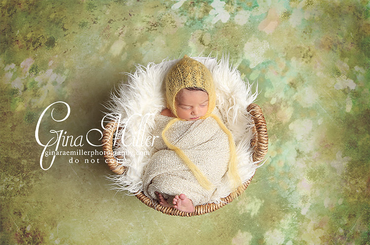 al2 alexa grace | long island newborn photographer