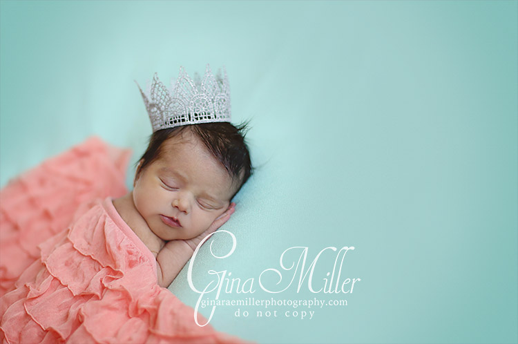 al5 alexa grace | long island newborn photographer