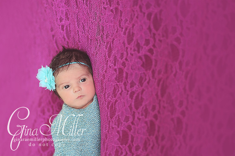 al8 alexa grace | long island newborn photographer