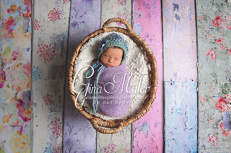e10 elizabeth fiona | long island newborn photographer