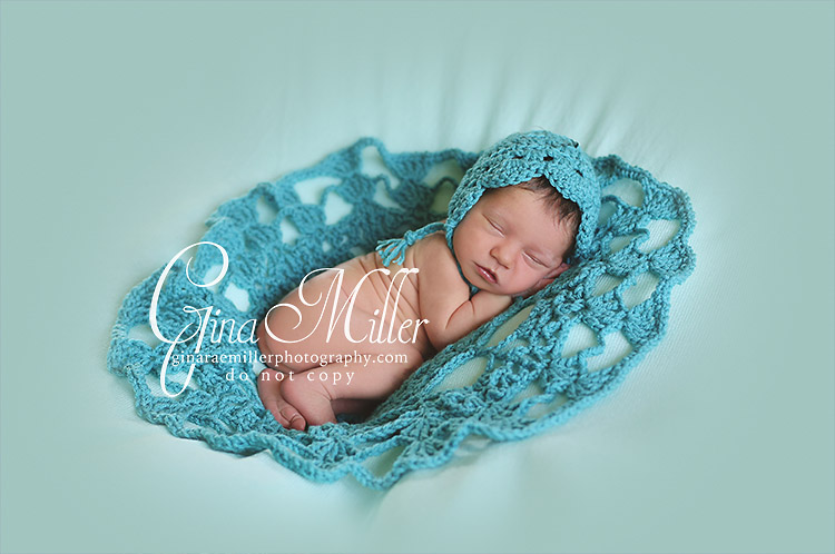 e4 elizabeth fiona | long island newborn photographer